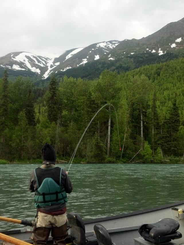 Backpacking Denali Fishing Kenai River